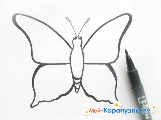 Gambar Kupu Kupu Dengan Pensil Cara Menggambar Pensil Kupu Kupu Secara Bertahap